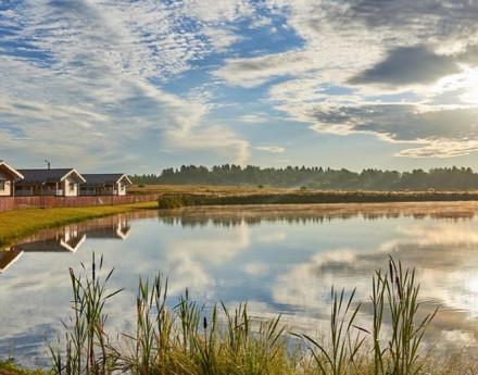 Виды поселка Лесные озера